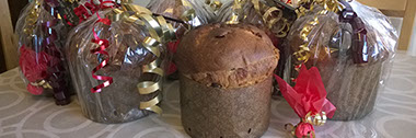 Traditional four-dough artisan panettone ready for Christmas delivery. © Martin Belderson